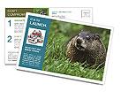 0000090416 Postcard Templates