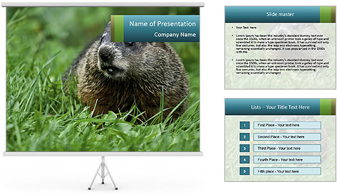 Ground Squirrel PowerPoint Template