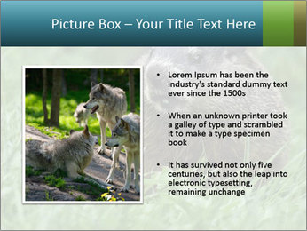 Ground Squirrel PowerPoint Template - Slide 13
