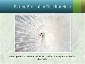 Ground Squirrel PowerPoint Template - Slide 15