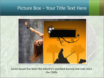 Ground Squirrel PowerPoint Template - Slide 16
