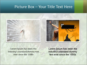 Ground Squirrel PowerPoint Template - Slide 18