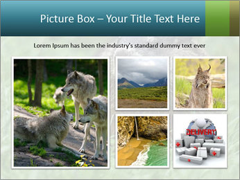 Ground Squirrel PowerPoint Template - Slide 19