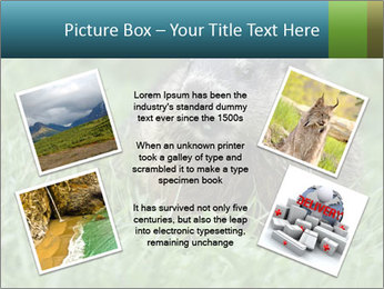 Ground Squirrel PowerPoint Template - Slide 24