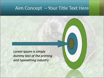 Ground Squirrel PowerPoint Template - Slide 83