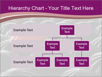 Identity Concept PowerPoint Templates - Slide 67
