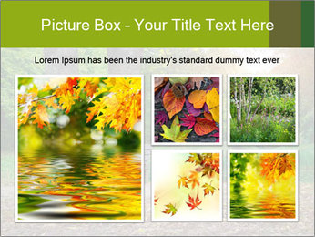 Empty Part PowerPoint Template - Slide 19