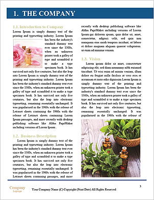 0000090425 Word Template - Page 3