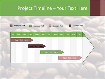 Natural Coffee Beans PowerPoint Template - Slide 25