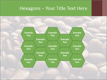 Natural Coffee Beans PowerPoint Template - Slide 44