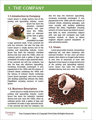 0000090433 Word Template - Page 3