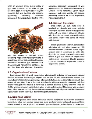 0000090433 Word Template - Page 4