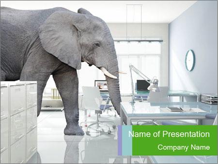 Elephant PowerPoint Templates