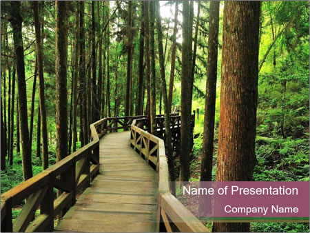 Wooden road PowerPoint Templates