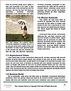 0000090446 Word Template - Page 4