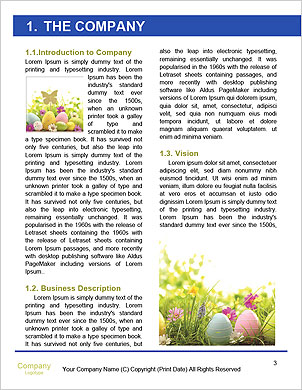 0000090447 Word Template - Page 3