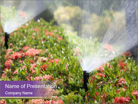 Sprinkler head watering PowerPoint Template