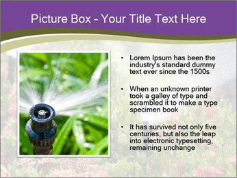 Sprinkler head watering PowerPoint Template - Slide 13