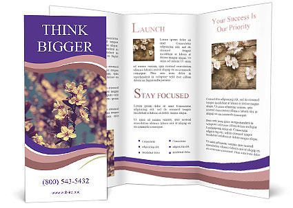 0000090449 Brochure Template