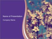 Vintage photo of pink cherry tree PowerPoint Templates