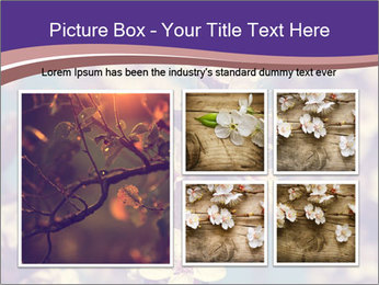 Vintage photo of pink cherry tree PowerPoint Template - Slide 19