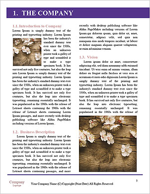 0000090449 Word Template - Page 3