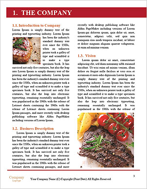 0000090458 Word Template - Page 3