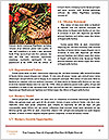 0000090458 Word Template - Page 4