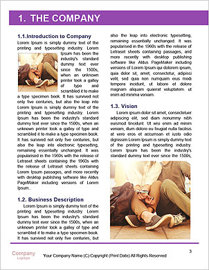 0000090460 Word Template - Page 3