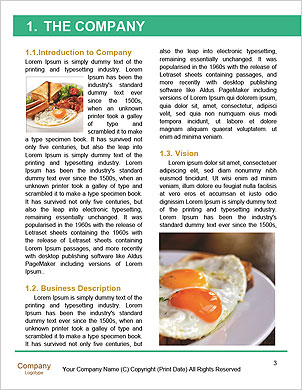 0000090467 Word Template - Page 3