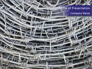 Stainless Barbed wire PowerPoint Templates