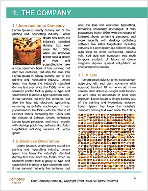 0000090470 Word Template - Page 3
