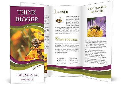0000090476 Brochure Template
