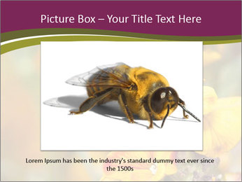 Bee In Garden PowerPoint Template - Slide 16