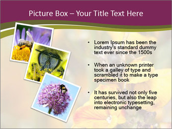 Bee In Garden PowerPoint Template - Slide 17