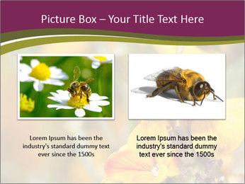 Bee In Garden PowerPoint Template - Slide 18
