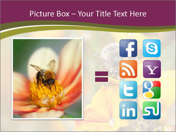 Bee In Garden PowerPoint Template - Slide 21