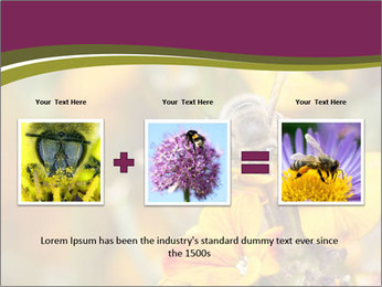 Bee In Garden PowerPoint Template - Slide 22