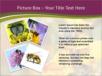 Bee In Garden PowerPoint Template - Slide 23