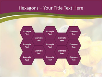 Bee In Garden PowerPoint Template - Slide 44