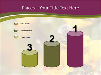 Bee In Garden PowerPoint Template - Slide 65