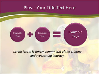 Bee In Garden PowerPoint Template - Slide 75