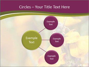 Bee In Garden PowerPoint Template - Slide 79