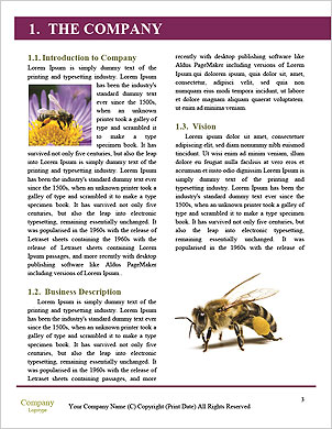 0000090476 Word Template - Page 3