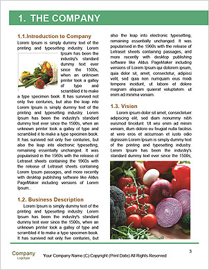 0000090491 Word Template - Page 3