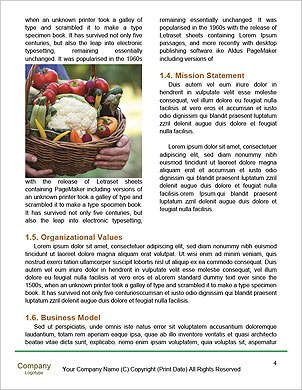 0000090491 Word Template - Page 4