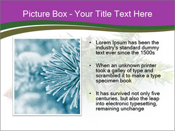Fir branch with cone PowerPoint Template - Slide 13