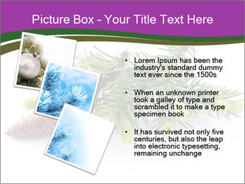 Fir branch with cone PowerPoint Template - Slide 17