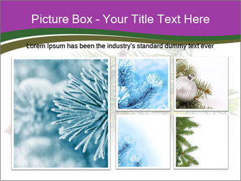 Fir branch with cone PowerPoint Template - Slide 19