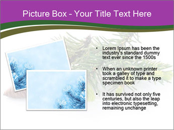 Fir branch with cone PowerPoint Template - Slide 20
